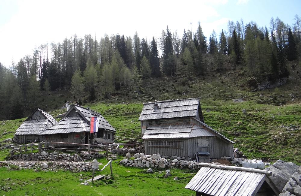 Bregarjevo zavetišče na planini Viševnik