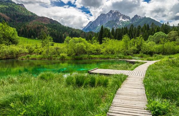 Slovenija četrta okolju najbolj prijazna država na svetu