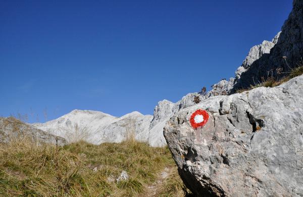 Katera naj postane naj planinska pot 2019 in si zasluži obnovo?