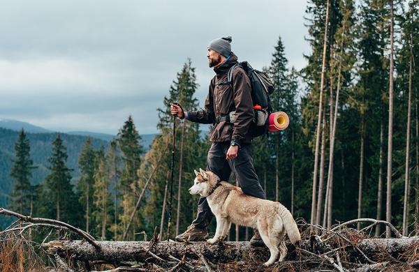 So psi dobrodošli v slovenskih planinskih kočah?