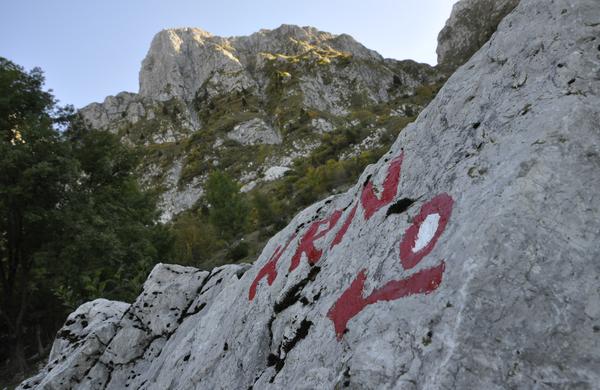 Veste, kaj pomenijo oznake na planinskih poteh?