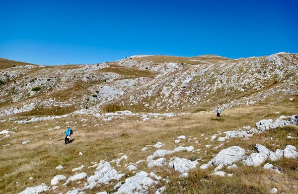 Med najboljšimi orientacisti na Balkanu tudi slovenski planinci